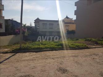 terrain 459 m2 zone villa rue 16 à moujahidine à t