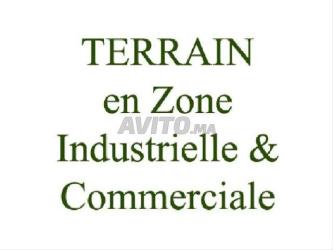 terrain 1.1 ha hotel/plateau bureau/commerce