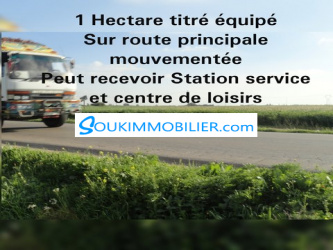 1 hectare pour station service
