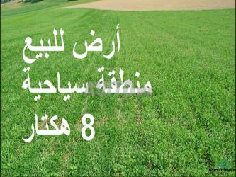 بقع أرضية محفضة لبناء منزل أوفيلا نواحي سيدي رحال