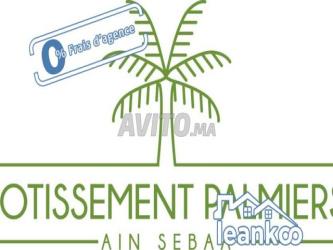 lotissement palmiers