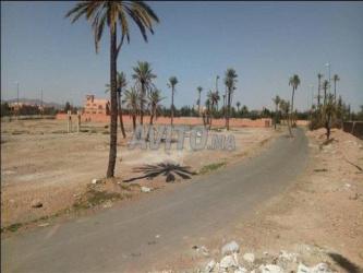 Terrain de 10000 m2 sur Boulevard Oued issil