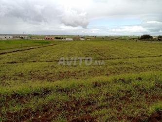 terrain pour villa de campagne tnine chtouka
