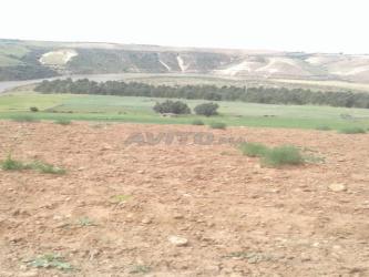 terrain 13000 m2 arg sehoul salè