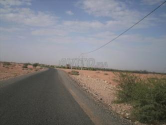 terrain 60000 m2 à 20 km de marrakech