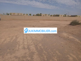 terrain de 2800 m2 route de ouarzazate
