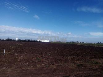 terrain agricole à mediouna