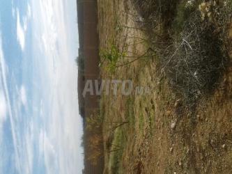 بقعة ارضية للبيع 300 متر 270 درهم المتر