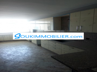 appartement de 150 m² centre ville