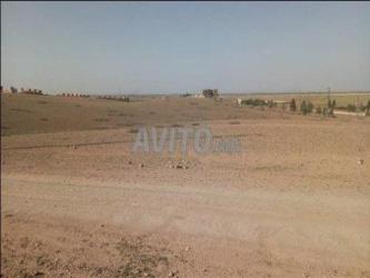terrain de 24000 m2 oumnass route amezmiz