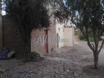 بقعة ارضية 120 م² للبيع مدينة بن احمد