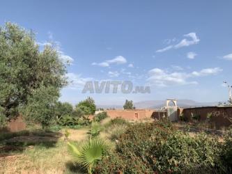 terrain 1000 m2 route d'ourika a ghmate