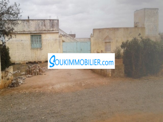 terrain agricole de 9ha region ben ahmed