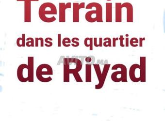 terrains dans le quartier de riyad
