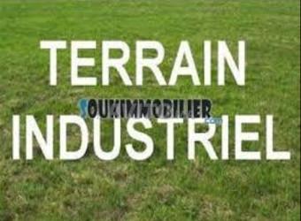 terrain industrielle titre sup 1100 m² en vente