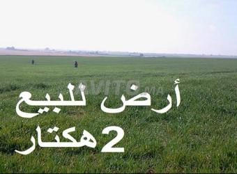 أراضي محفظة بمساحة مختلفة نواحي سيدي رحال