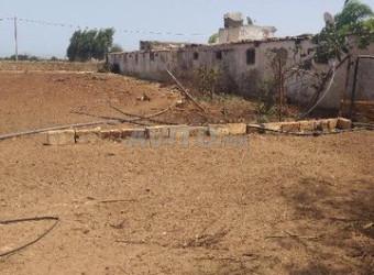 فرمة للبيع هكتار ونصف في ولاد صالح réf quq2l