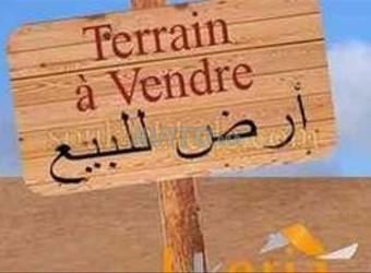 Terrain de 30100 m2 Route d'Ourika أرض للبيع