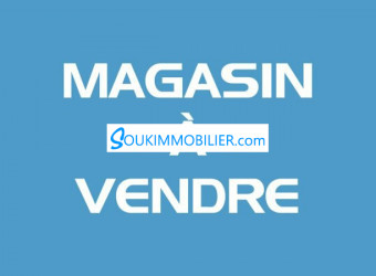 magasin 120m2 avendre