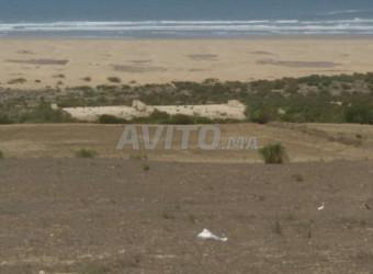 أرض على بحر لبيع في الصويرة منطقة بحيبح ساحل