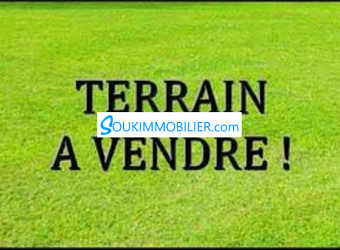terrain 150m2 a vendre a hay mohamadi