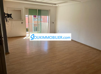 appartement 3 chambre salons