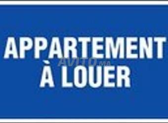 appartement 56m2 vide à louer