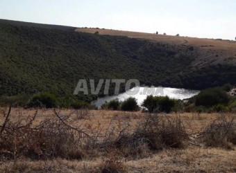 terrains 3.5 hektar jit sad rewidat