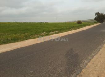 terrain agricole 57040 m2 à 30km d\'el jadida