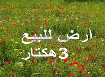 أراضي محفظة بنواحي سيدي رحال شاطئ