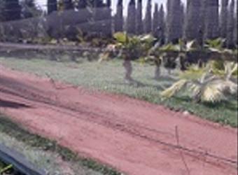 Terrain agricole 13000 m2